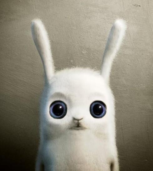 HELP THE HURRICANE SANDY MISSING STORM PETS - Links Here! Love, Bunny-Cord and Animal-Circus-Bezerkus